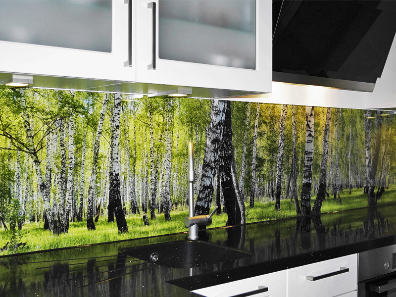 Küchenrückwand mit bedrucktem Sicherheitsglas - Haus